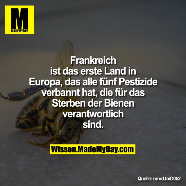 Frankreich ist das erste Land in<br /> Europa, das alle fünf Pestizide<br /> verbannt hat, die für das Sterben<br /> der Bienen verantwortlich sind.