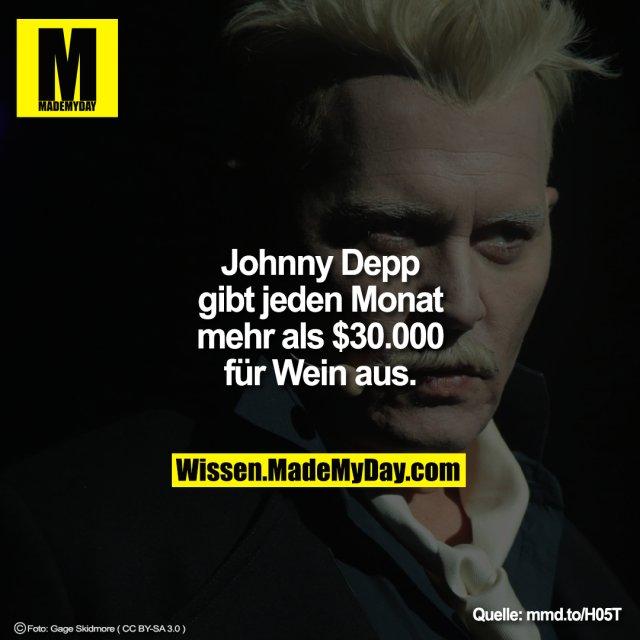 Johnny Depp gibt jeden Monat mehr als $30.000 für Wein aus.