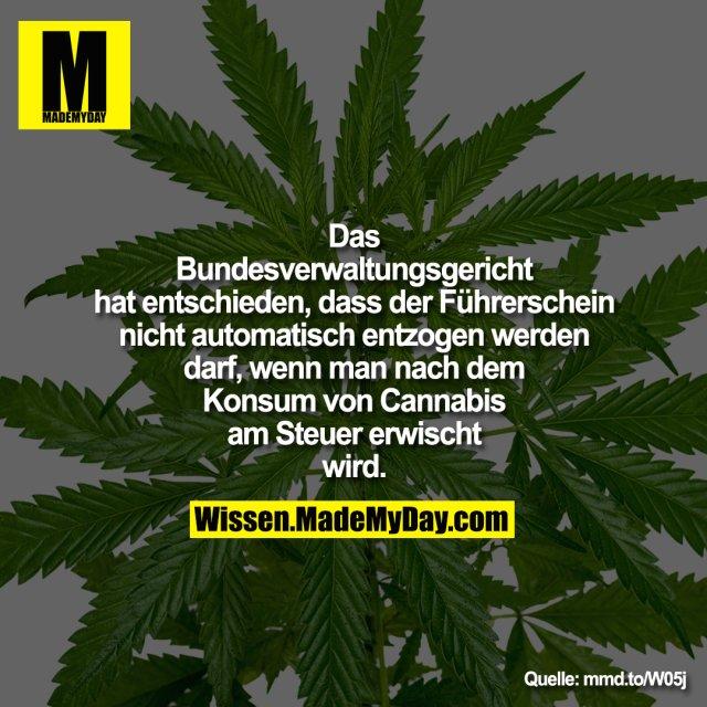 Das Bundesverwaltungsgericht hat entschieden, dass der Führerschein nicht automatisch entzogen werden darf, wenn man nach dem Konsum von Cannabis am Steuer erwischt wird.<br /> <br /> mmd.to/W05j