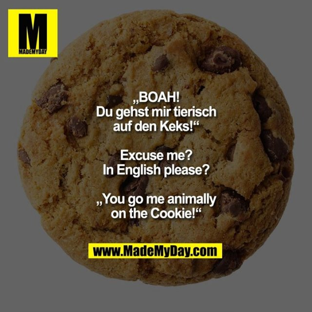 """""""BOAH! Du gehst mir tierisch auf den Keks!""""<br /> Excuse me? In English please?<br /> """"You go me animally on the Cookie!"""""""