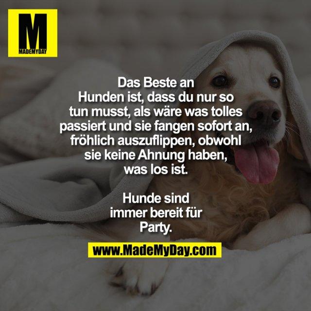Das Beste an Hunden ist, dass du nur so tun musst, als wäre was<br /> tolles passiert und sie fangen<br /> sofort an, fröhlich auszuflippen,<br /> obwohl sie keine Ahnung haben,<br /> was los ist.<br /> <br /> Hunde sind immer<br /> bereit für Party.