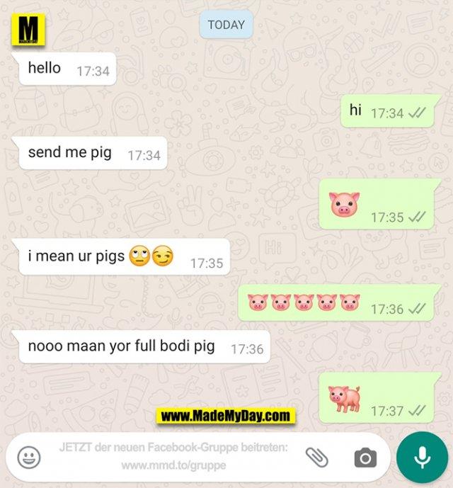 hello<br /> hi<br /> send me pig<br /> 🐷<br /> i mean uz pigs 🙄😏<br /> 🐷🐷🐷🐷🐷<br /> nooo maan yor full bodi pig<br /> 🐖