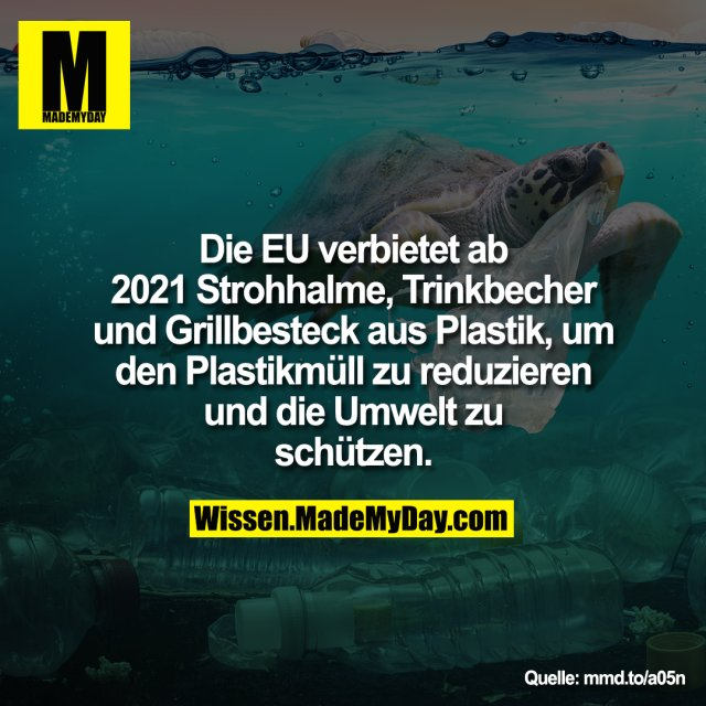 Die EU verbietet ab 2021 Strohhalme, Trinkbecher und Grillbesteck aus Plastik, um den Plastikmüll zu reduzieren und die Umwelt zu schützen.<br /> <br /> mmd.to/a05n