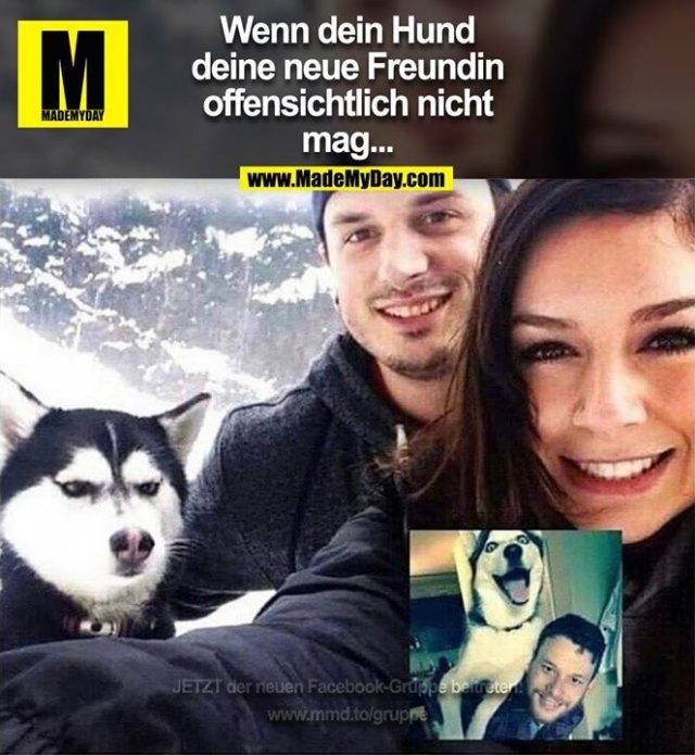 Wenn dein Hund<br /> deine neue Freundin<br /> offensichtlich nicht<br /> mag...