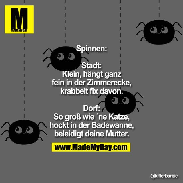 Spinnen:<br /> Stadt: Klein, hängt ganz fein in der Zimmerecke, krabbelt fix davon<br /> Dorf: So groß wie ´ne Katze, hockt in der Badewanne, beleidigt deine Mutter