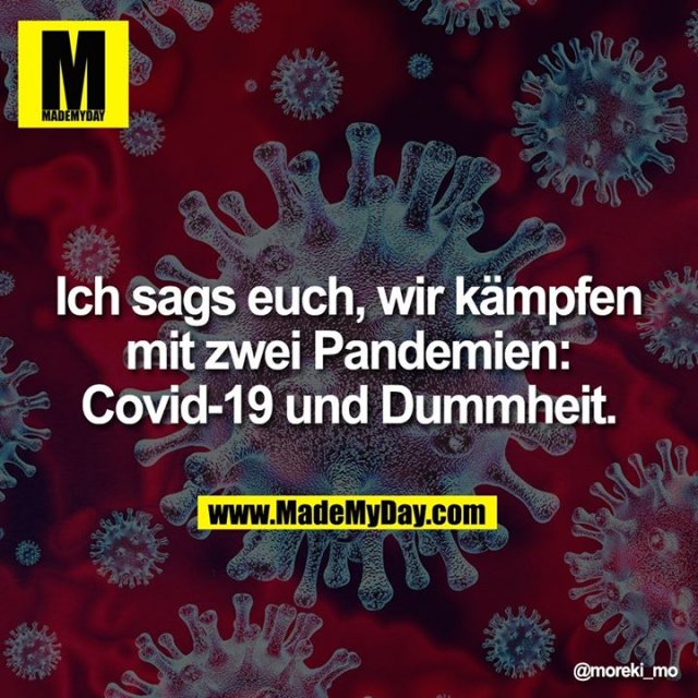 Ich sags euch, wir kämpfen mit zwei Pandemien: Covid-19 und Dummheit.