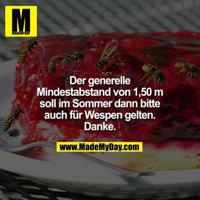 Der generelle Mindestabstand von 1,50m soll im Sommer dann bitte auch für Wespen gelten. Danke.