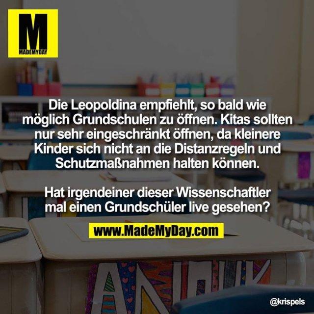 Die Leopoldina empfiehlt, so bald wie möglich Grundschulen zu öffnen. Kitas sollten nur sehr eingeschränkt öffnen, da kleinere Kinder sich nicht an die Distanzregeln und Schutzmaßnahmen halten können.<br /> <br /> Hat irgendeiner dieser Wissenschaftler mal einen Grundschüler live gesehen?