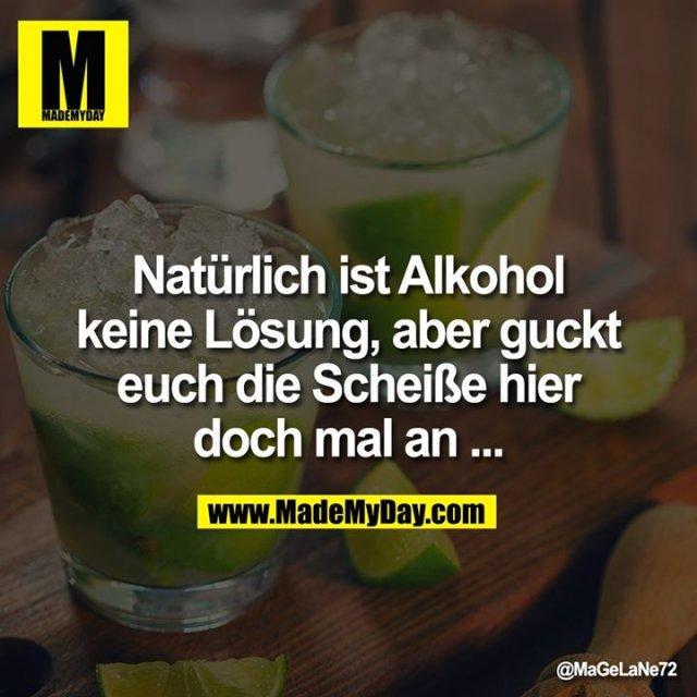 Natürlich ist Alkohol keine Lösung, aber guckt euch die Scheiße hier doch mal an ...