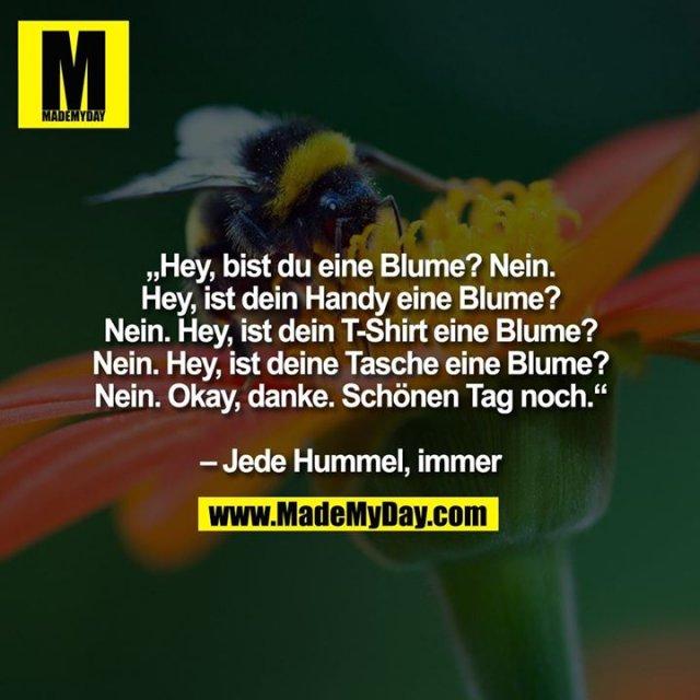 """""""Hey, bist du eine Blume? Nein. Hey, ist dein Handy eine Blume? Nein. Hey, ist dein T-Shirt eine Blume? Nein. Hey, ist deine Tasche eine Blume? Nein. Okay, danke. Schönen Tag noch.""""<br /> <br /> – Jede Hummel, immer"""
