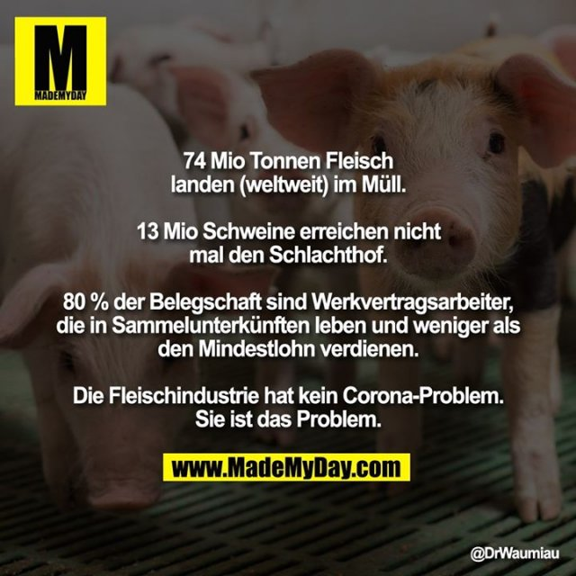 74 Mio Tonnen Fleisch landen (weltweit) im Müll.<br /> <br /> 13 Mio Schweine erreichen nicht mal den Schlachthof.<br /> <br /> 80 % der Belegschaft sind Werkvertragsarbeiter, die in Sammelunterkünften leben und weniger als den Mindestlohn verdienen.<br /> <br /> Die Fleischindustrie hat kein Corona-Problem. Sie ist das Problem.