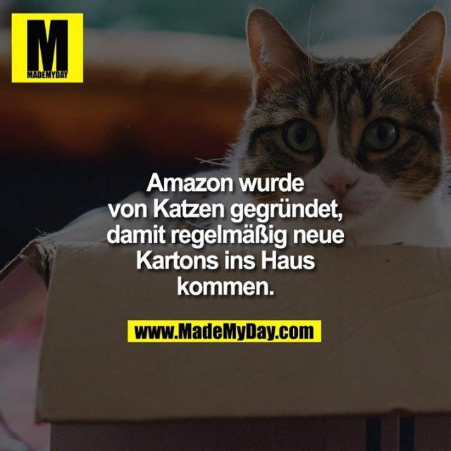 Amazon wurde von Katzen gegründet, damit regelmäßig neue Kartons ins Haus kommen.