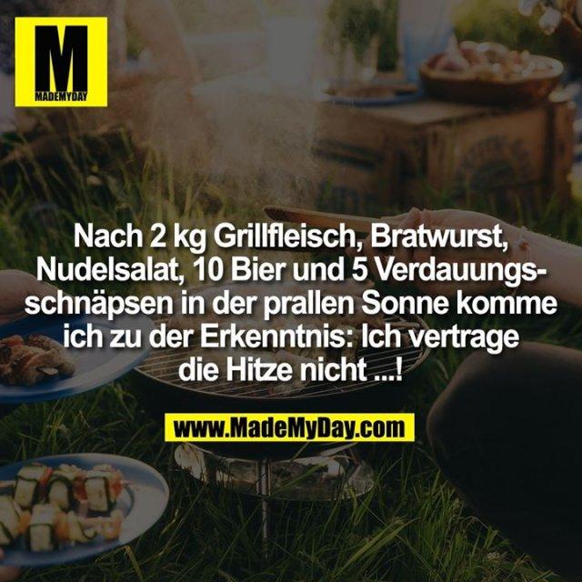 Nach 2 kg Grillfleisch, Bratwurst, Nudelsalat, 10 Bier und 5 Verdauungsschnäpsen in der prallen Sonne komme ich zu der Erkenntnis: Ich vertrage die Hitze nicht...!