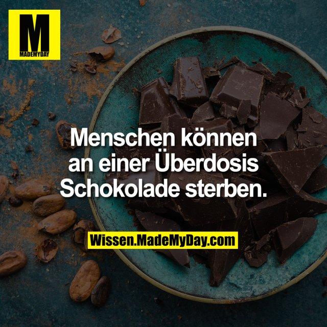 Menschen können an einer Überdosis Schokolade sterben.