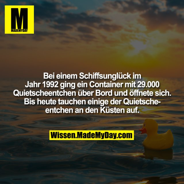 Bei einem Schiffsunglück im Jahr 1992 ging ein Container mit 29.000 Quietscheentchen über Bord und öffnete sich. Bis heute tauchen einige der Quietscheentchen an den Küsten auf.