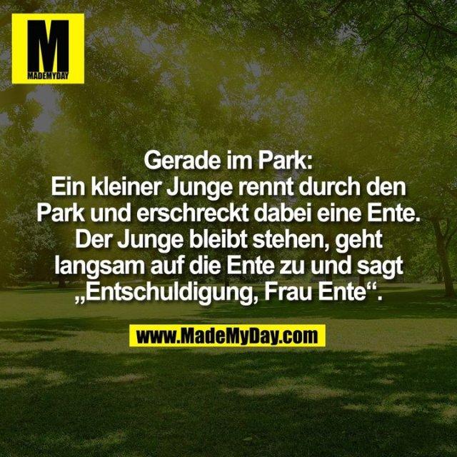 """Gerade im Park:<br /> Ein kleiner Junge rennt durch den<br /> Park und erschreckt dabei eine Ente.<br /> Der Junge bleibt stehen, geht<br /> langsam auf die Ente zu und sagt<br /> """"Entschuldigung, Frau Ente""""."""