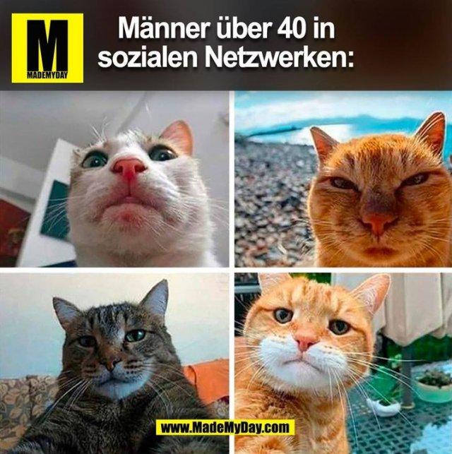 Männer über 40 in sozialen Netzwerken: (BILD)