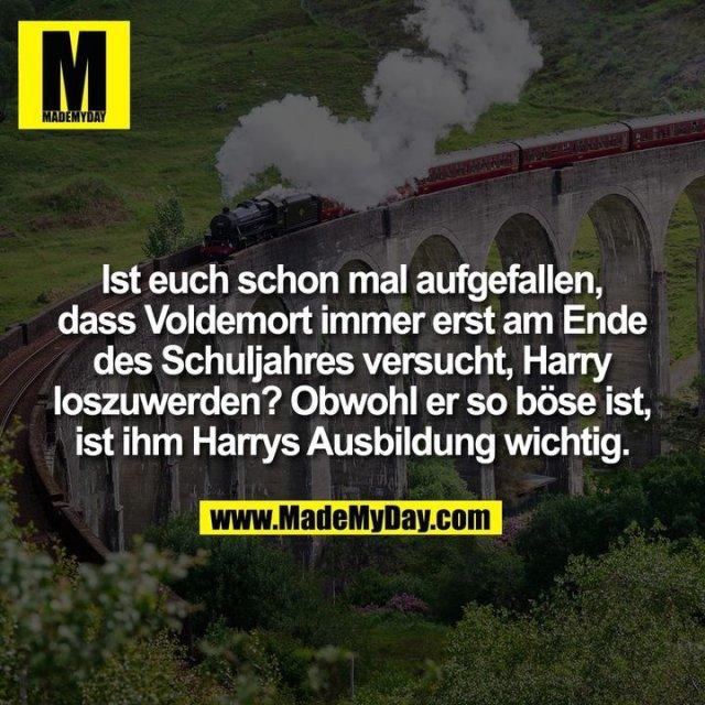 Ist euch schon mal aufgefallen, dass Voldemort immer erst am Ende des Schuljahres versucht, Harry loszuwerden? Obwohl er so böse ist, ist ihm Harrys Ausbildung wichtig.