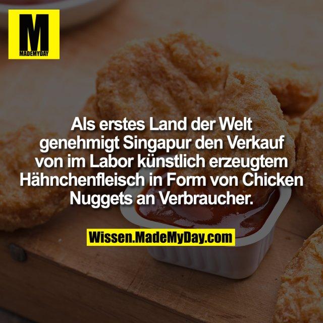 Als erstes Land der Welt genehmigt Singapur den Verkauf von im Labor künstlich erzeugtem Hähnchenfleisch in Form von Chicken Nuggets an Verbraucher.