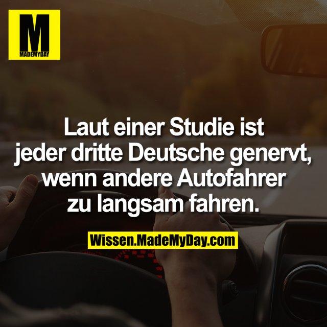 Laut einer Studie ist jeder dritte Deutsche genervt, wenn andere Autofahrer zu langsam fahren.