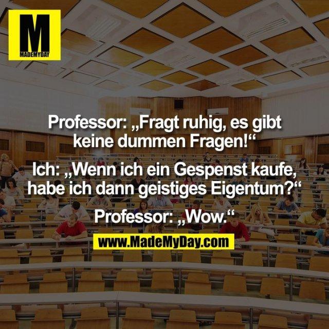 """Professor: """"Fragt ruhig, es gibt<br /> keine dummen Fragen!""""<br /> <br /> Ich: """"Wenn ich ein Gespenst kaufe,<br /> habe ich dann geistiges Eigentum?""""<br /> <br /> Professor: """"Wow."""""""