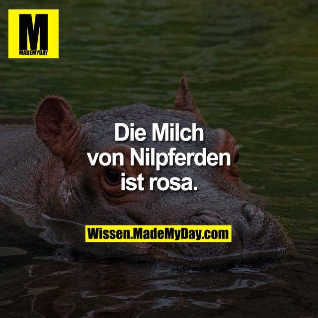 Die Milch von Nilpferden ist rosa.