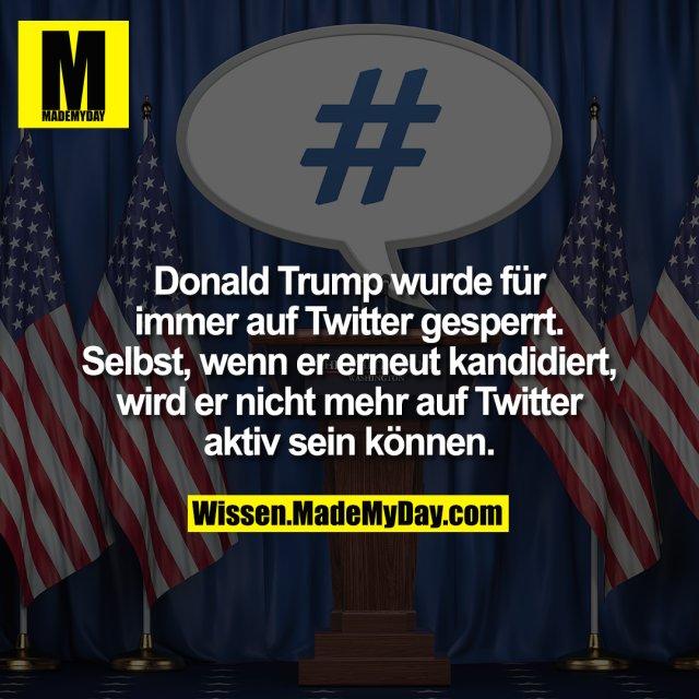 Donald Trump wurde für immer auf Twitter gesperrt. Selbst, wenn er erneut kandidiert, wird er nicht mehr auf Twitter aktiv sein können.