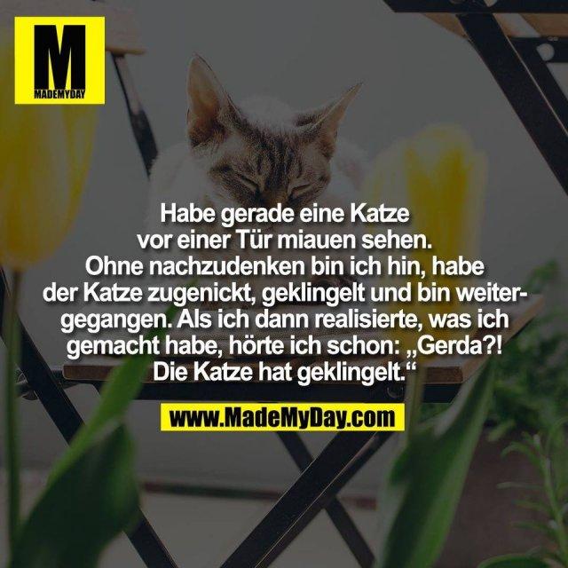 """Habe gerade eine Katze<br /> vor einer Tür miauen sehen.<br /> Ohne nachzudenken bin ich hin, habe<br /> der Katze zugenickt, geklingelt und bin weiter-<br /> gegangen. Als ich dann realisierte, was ich<br /> gemacht habe, hörte ich schon: """"Gerda?!<br /> Die Katze hat geklingelt."""""""