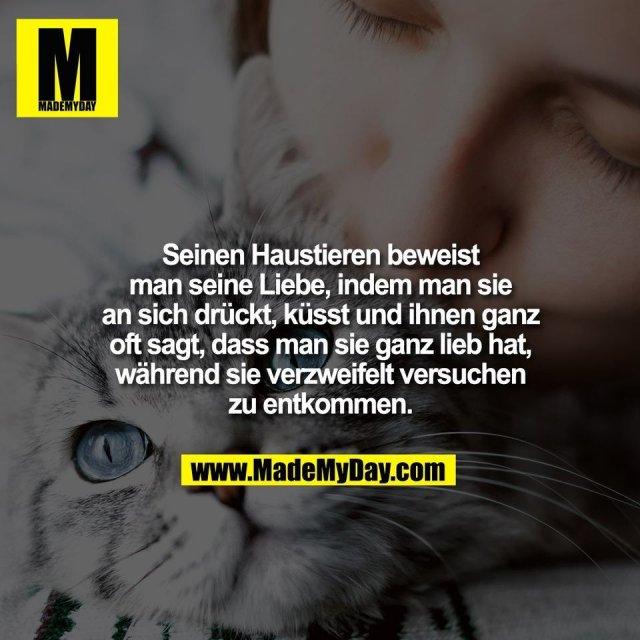 Seinen Haustieren beweist<br /> man seine Liebe, indem man sie<br /> an sich drückt, küsst und ihnen ganz<br /> oft sagt, dass man sie ganz lieb hat,<br /> während sie verzweifelt versuchen<br /> zu entkommen.