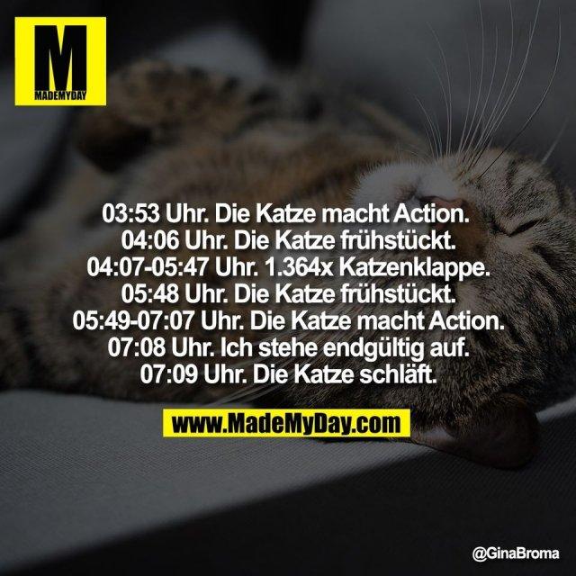 03:53 Uhr. Die Katze macht Action. <br /> 04:06 Uhr. Die Katze frühstückt.<br /> 04:07-05:47 Uhr. 1.364x Katzenklappe.<br /> 05:48 Uhr. Die Katze frühstückt.<br /> 05:49-07:07 Uhr. Die Katze macht Action.<br /> 07:08 Uhr. Ich stehe endgültig auf.<br /> 07:09 Uhr. Die Katze schläft.