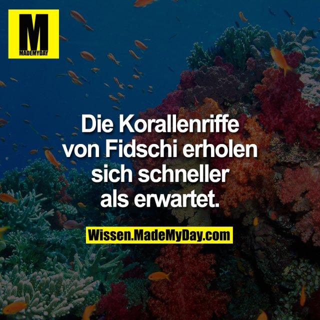 Die Korallenriffe von Fidschi erholen sich schneller als erwartet.