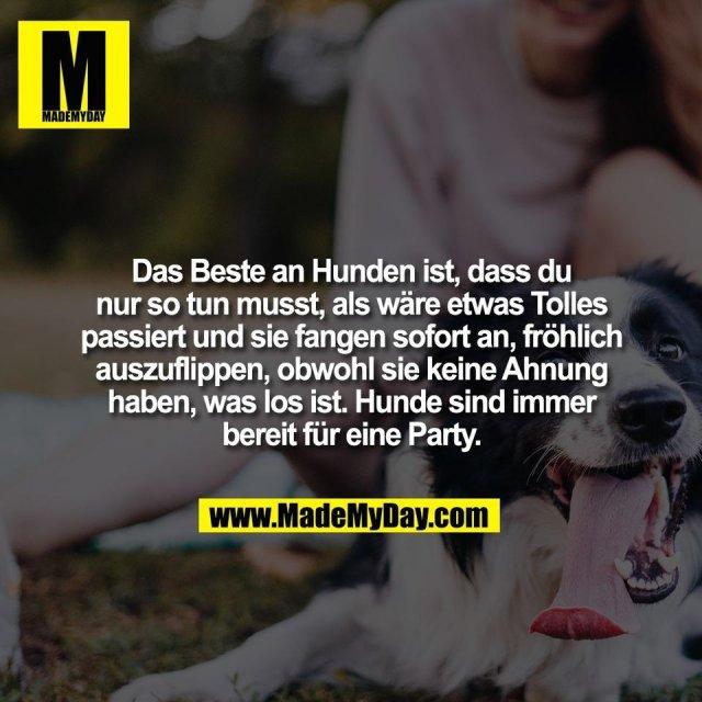 Das Beste an Hunden ist, dass du<br /> nur so tun musst, als wäre etwas Tolles<br /> passiert und sie fangen sofort an, fröhlich<br /> auszuflippen, obwohl sie keine Ahnung<br /> haben, was los ist. Hunde sind immer<br /> bereit für eine Party.