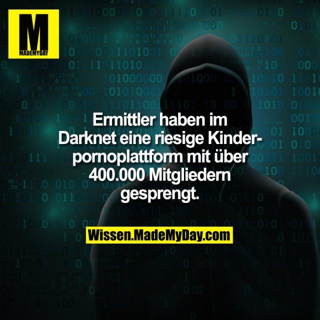 Ermittler haben im Darknet eine riesige Kinderpornoplattform mit über 400.000 Mitgliedern gesprengt.