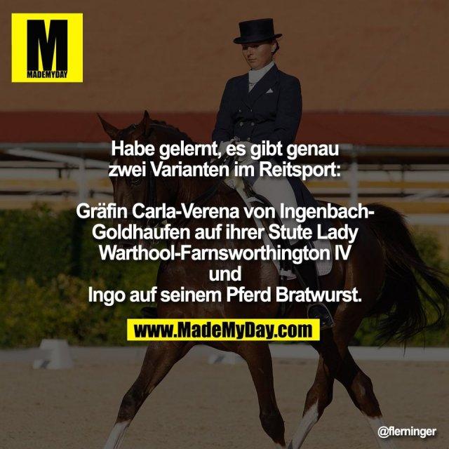 Habe gelernt, es gibt genau<br /> zwei Varianten im Reitsport:<br /> <br /> Gräfin Carla-Verena von Ingenbach-<br /> Goldhaufen auf ihrer Stute Lady<br /> Warthool-Farnsworthington IV<br /> und<br /> Ingo auf seinem Pferd Bratwurst.