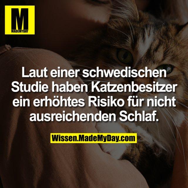 Laut einer schwedischen Studie haben Katzenbesitzer ein erhöhtes Risiko für nicht ausreichenden Schlaf.
