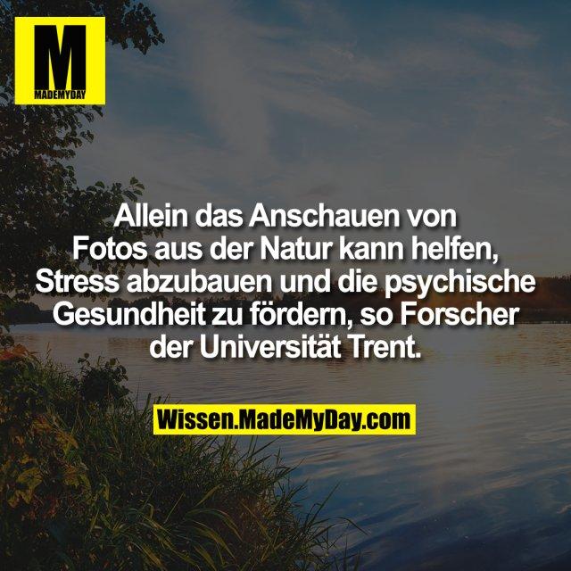 Allein das Anschauen von Fotos aus der Natur kann helfen, Stress abzubauen und die psychische Gesundheit zu fördern, so Forscher der Universität Trent.