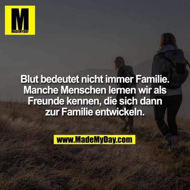 Blut bedeutet nicht immer Familie. Manche Menschen lernen wir als Freunde kennen, die sich dann zur Familie entwickeln.