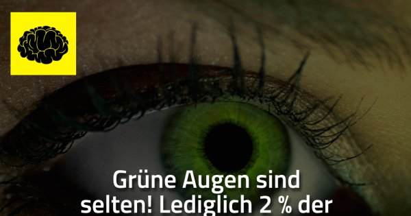 Grune Augen Sind Selten Made My Day